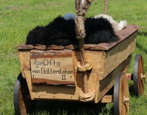 otto-von-bollersleben-ii_26948219333_o